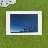 pc054「月夜のポンチャたち」