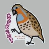 【野鳥生活】防水UVステッカー「ちょっとこい?」送料180円