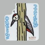【野鳥生活】防水UVステッカー「つついてた木がみあたらない」送料180円