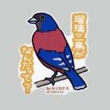 【野鳥生活】防水UVステッカー「瑠璃三鳥がなんだって?」送料180円