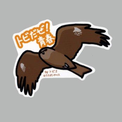 画像1: 【野鳥生活】防水UVステッカー「トビだぜ! 青春」送料180円