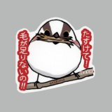 【野鳥生活】防水UVステッカー「たすけて! 毛が足りないの!」送料180円