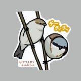 【野鳥生活】防水UVステッカー「チーチィチィ」送料180円