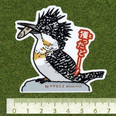画像2: 【野鳥生活】防水UVステッカー「獲ったどーー!」送料180円