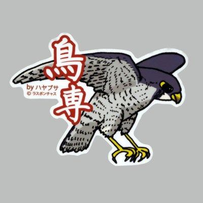 画像1: 【野鳥生活】防水UVステッカー「鳥専」送料180円