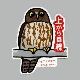 【野鳥生活】防水UVステッカー「アオバズク」送料180円