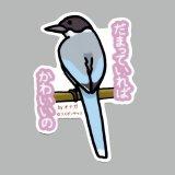 【野鳥生活】防水UVステッカー「だまっていれば可愛いの」送料180円
