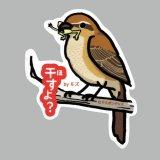 【野鳥生活】防水UVステッカー「干すよ?」送料180円