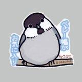 【野鳥生活】防水UVステッカー「ベレー帽がお気に入り」送料180円