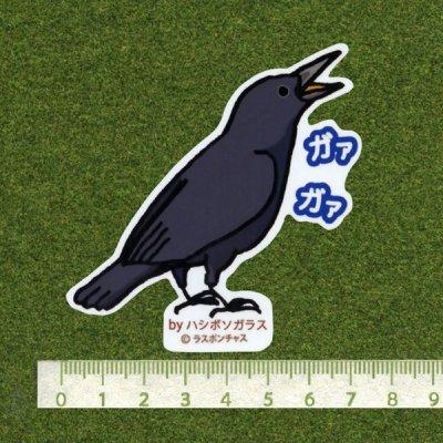 画像2: 【野鳥生活】防水UVステッカー「ガァ ガァ」送料180円