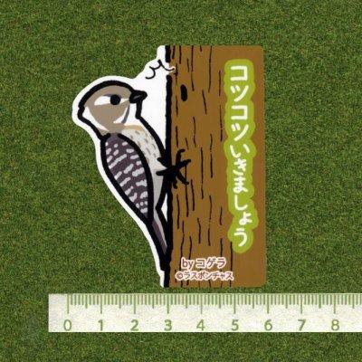 画像2: 【野鳥生活】防水UVステッカー「コツコツいきましょう」送料180円