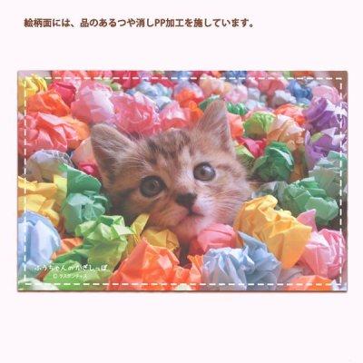 画像1: poc_03「紙玉ふうちゃん」ポスクロに最適