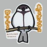 【野鳥生活】防水UVステッカー「鳥とオンナは四十から」送料180円