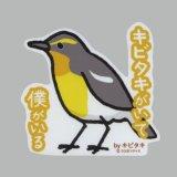 【野鳥生活】防水UVステッカー「キビタキがいて 僕がいる」送料180円