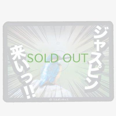 画像1: 【野鳥生活】防水UVステッカー「ジャスピン来いっカワセミ編」送料180円