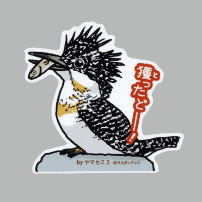 画像1: 【野鳥生活】防水UVステッカー「獲ったどーー!」送料180円