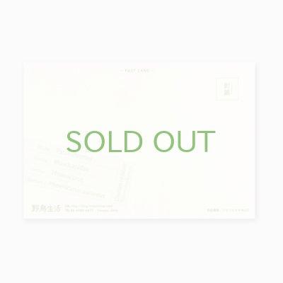 画像2: 【野鳥生活】色鉛筆画ポストカード「ジョウビタキ01」送料180円