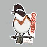 【野鳥生活】防水UVステッカー「やんのかコラ」送料180円