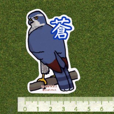 画像2: 【野鳥生活】防水UVステッカー「蒼」送料180円