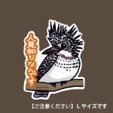 【野鳥生活】防水UVステッカー・Lサイズ07「ヤマセミ01」送料180円