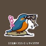 【野鳥生活】防水UVステッカー・Lサイズ「カワセミ02」送料180円