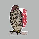 【野鳥生活】防水UVステッカー「わかったか!」送料180円