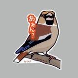 【野鳥生活】防水UVステッカー「あぁん?」送料180円