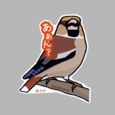 画像1: 【野鳥生活】防水UVステッカー「あぁん?」送料180円
