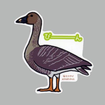 画像1: 【野鳥生活】防水UVステッカー「びーーーん」送料180円