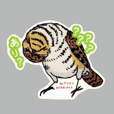 画像1: 【野鳥生活】防水UVステッカー「????あり?」送料180円