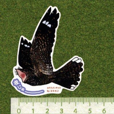 画像2: 【野鳥生活】防水UVステッカー「夜じゃーーーー」送料180円
