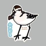 【野鳥生活】防水UVステッカー「小さじ1」送料180円