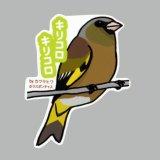 【野鳥生活】防水UVステッカー「キリコロキリコロ」送料180円