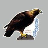 【野鳥生活】防水UVステッカー「ひとりっ子です」送料180円