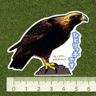 画像2: 【野鳥生活】防水UVステッカー「ひとりっ子です」送料180円