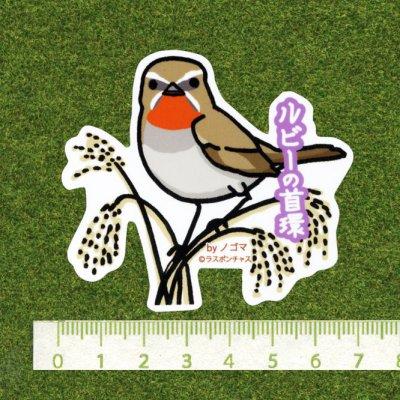 画像2: 【野鳥生活】防水UVステッカー「ルビーの首環」送料180円