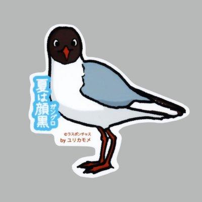 画像1: 【野鳥生活】防水UVステッカー「夏は顔黒(ガングロ)」送料180円