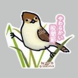 【野鳥生活】防水UVステッカー「やわらかい股関節」送料180円
