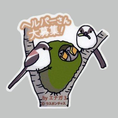 画像1: 【野鳥生活】防水UVステッカー「ヘルパーさん大募集!」送料180円