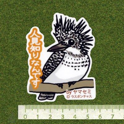 画像2: 【野鳥生活】防水UVステッカー「人見知りなんです」送料180円