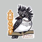 【野鳥生活】防水UVステッカー「人見知りなんです」送料180円