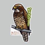【野鳥生活】防水UVステッカー「ピックィー」送料180円